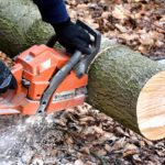 Chain Saw Certification Course